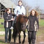 Die Pferdebewegung lockert die Muskulatur.
